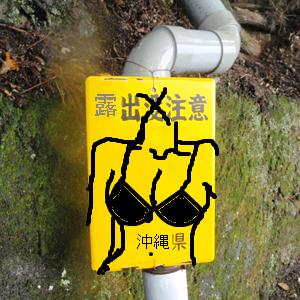 Neta_038_cocolog_oekaki_2010_02_20_